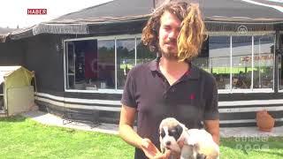 Sahiplendiği 22 köpeğe iş yerinin bahçesinde bakıyor
