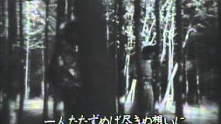 マロニエの木蔭