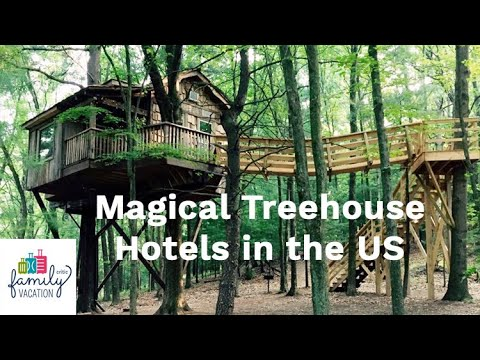 8 Most Magical Treehouse Hotels In The U S 2020