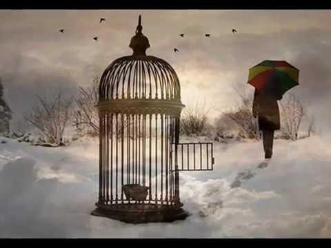 "NANA MOUSKOURI: ""Song for Liberty"" - ( Verdi - Nabucco)"
