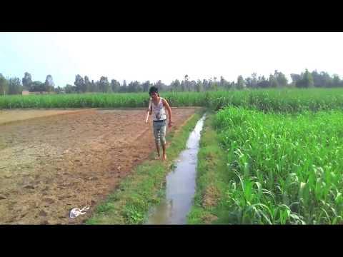 Yaar Beli 2 ( Full Video Song ) / Parmish Verma/ Latest Punjabi song.