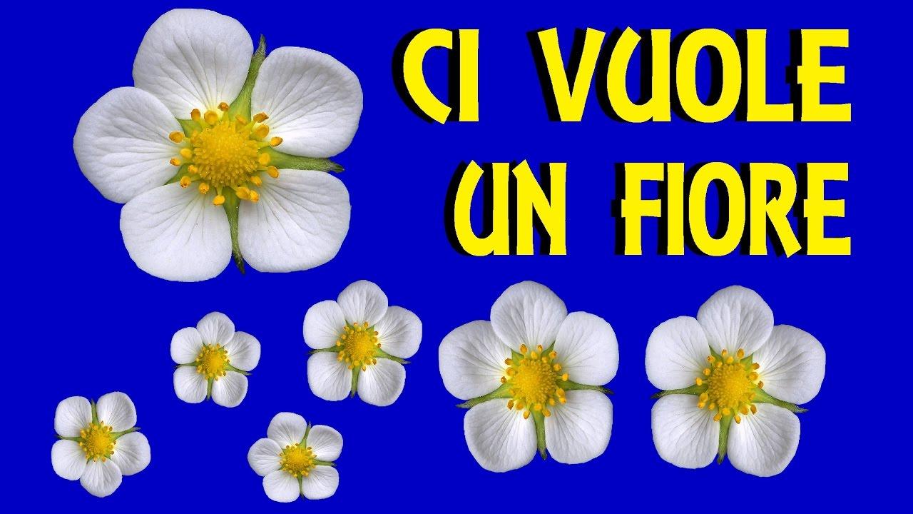 Ci vuole un fiore con testi canzoni per bambini youtube for Altalena con scivolo per bambini