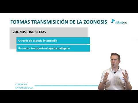 🦇 #ZOONOSIS: El ORIGEN Del #CORONAVIRUS De WUHAN