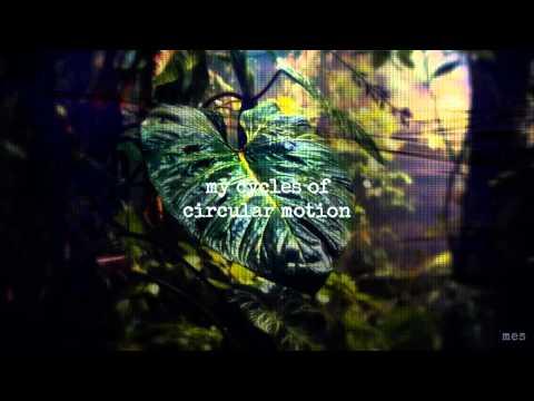 Jungle Love   Steve Miller Band   Lyrics ☾☀