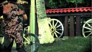"FITTER ""The Coconut Tree"" Official Video"