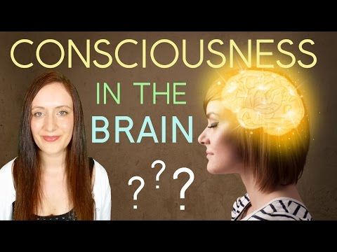 Is CONSCIOUSNESS Produced By The BRAIN? Or Is Consciousness OUT THERE?
