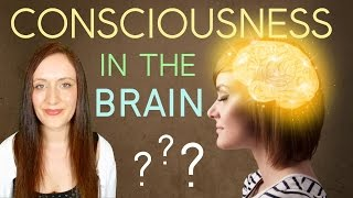 Is CONSCIOUSNESS Within The BRAIN? Or Is it OUT THERE In the Unified Field?