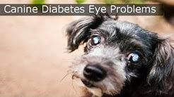 hqdefault - Diabetes Medical Expert Witness In Boston