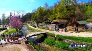 Zooloski vrt Pionirska dolina - Sarajevo 2015 - Snimci iz zraka - Aerial Footage Video
