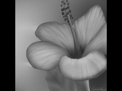 Black and white flower speed paint youtube black and white flower speed paint mightylinksfo