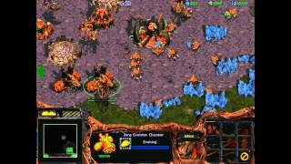 Starcraft 1: Insurrection - Zerg 09 - The Ultimate Conquest