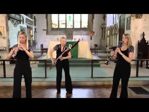 Brahms Hungarian Dance