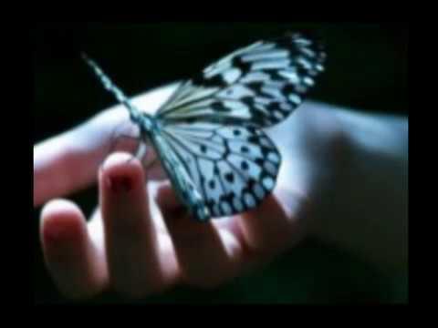 Kelebek Ömrü Şiiri-Mehmet Nuri Parmaksız