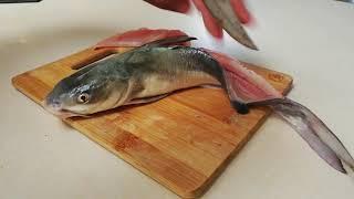 Как вырезать филе у сома Самый простой способ Как готовить кэт фиш океанского сома филе кэт фиш