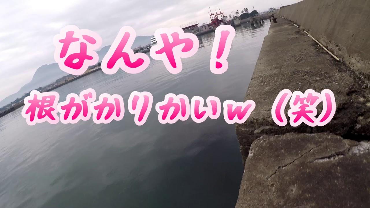 タケノコメバルか釣れるフェリーターミナルが存在した!多比良港