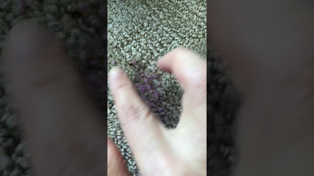 How To Remove Putty From Your Carpet In 3 Minutes Youtube