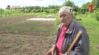 В Тульской области женщина умерла после укуса змеи. РЕПОРТАЖ