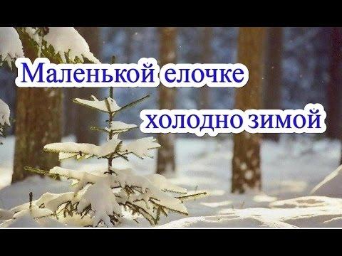 Караоке - Маленькой ёлочке холодно зимой Детская новогодняя | Russian Christmas song Karaoke