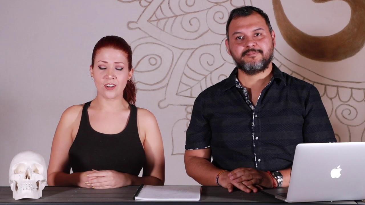 Curso de Anatomia de Yoga Inteligente - YouTube