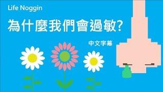 life noggin 為什麼我們會過敏 中文cc字幕
