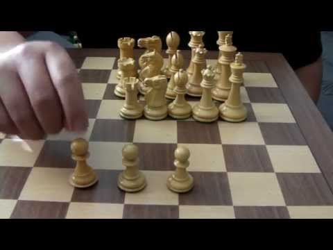 Chess Sets -- A Comparison Review