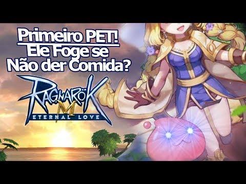 Ragnarok M Eternal Love: Como conseguir o primeiro Pet!? Sem comida ele foge!? Como ganhar intimidade!!! - Omega Play
