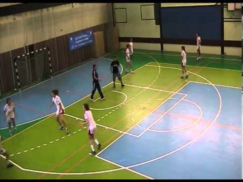 Ball Steals in Defence- Individual and Group Exercise by Monique Tijsterman