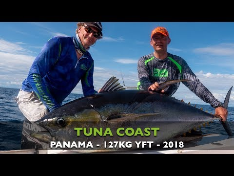CATCHING A MONSTER 127 KILO YELLOW FIN TUNA ON THE HANNIBAL BANKS IN PANAMA!
