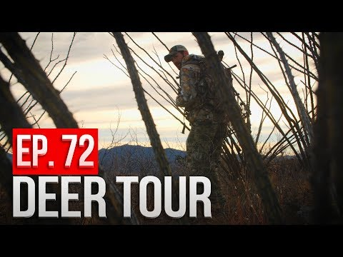 STALKING a BEDDED BUCK! Day 5 - Arizona Public Land Bowhunt - DEER TOUR E72