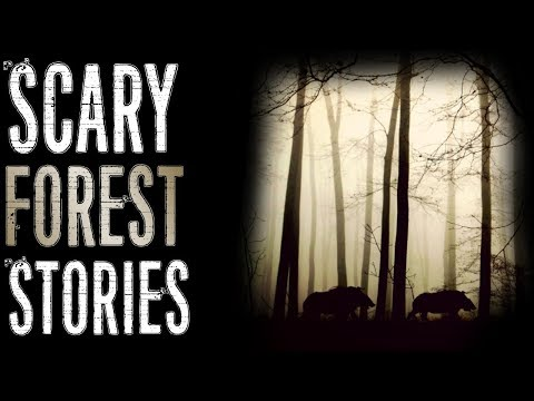 Terrifying Stories from the Forest (Creature Encounters, Humanoids)   Mr. Davis