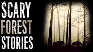 Terrifying Stories from the Forest (Creature Encounters, Humanoids) | Mr. Davis