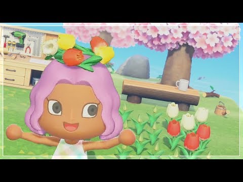 NOUVEAUTÉ & DÉTAIL | Animal Crossing New Horizons (SWITCH)