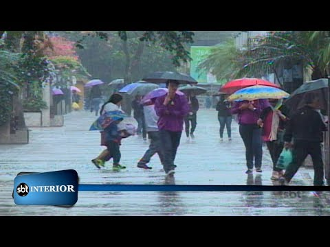 No oeste paulista produtores rurais comemoram a chegada da chuva