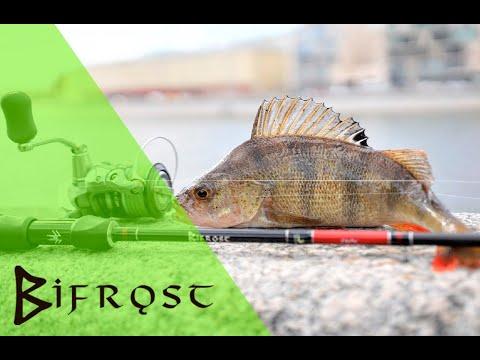 Norstream Bifrost. Трофейная рыбалка с лёгкой снастью