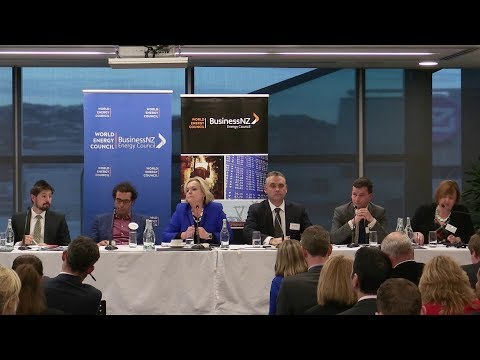 Energy Panel 2017 - The Sector's Premier Pre-Election Event