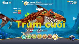 Game hungry shark ku chó mua được cá mập gần cuối hủy diệt đại dương