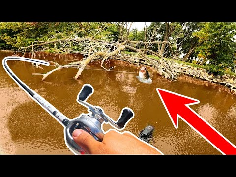 Catching The BIGGEST BASS In The Lake From MUDDY Shallow Water!! (Tournament Pre-Fishing)