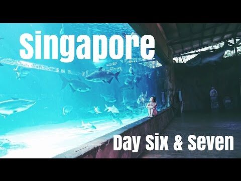 Travel Vlog || SINGAPORE - River & Night Safari
