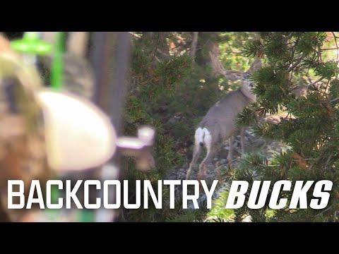 Bow Hunting Mule Deer – Brian Barney Public Land OTC Hunt