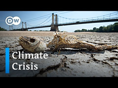 Record Temperature Heatwave In Europe: The New Normal? | DW News