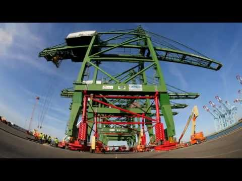 Heightening of STS cranes by ZPMC @ container terminal in Zeebrugge Belgium