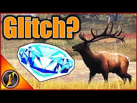 Weirdest Diamond Ever... | theHunter Call of the Wild