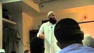 Mohammad El shinnawy -