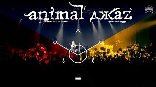 Animal ДжаZ - live @ Ray Just Arena (19.04.2015) - ALL STAR TV 2015