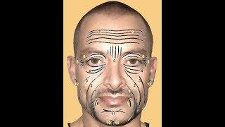 Significado De Las Arrugas, Los Surcos, Las Marcas Y Los Pliegues De La Cara