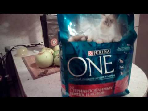 Корм для кошек Purina One