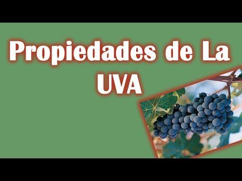Beneficios curativos, Propiedades de La UVA y Características Nutritivas