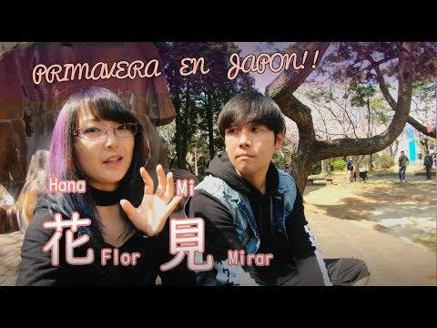 SAKURA Y PRIMAVERA EN JAPON / HANAMI - NaruSushiVlogs! thumbnail