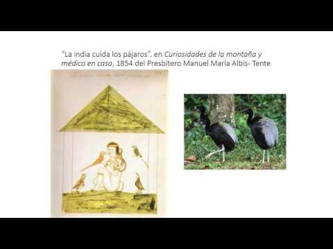Traumas, Ponzoñas y Venenos de Origen Animal en Colombia
