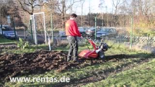 Gartenfräse klein mieten bei Rentas, Kurzbeschreibung